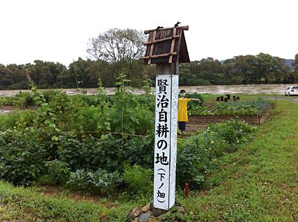 下ノ畑(2010)