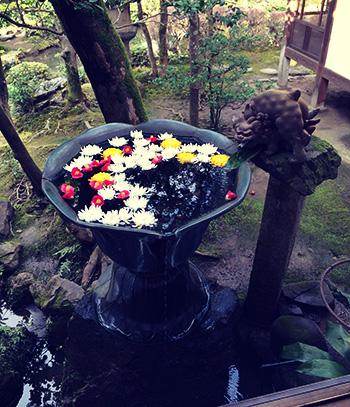 法然院の手水鉢