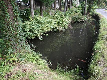 熊堂古墳の沼