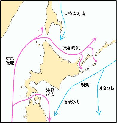 北海道周辺の海流