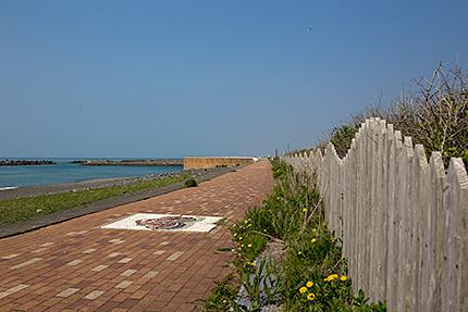 ふるさと海岸の遊歩道