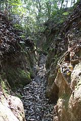 比叡山下山道