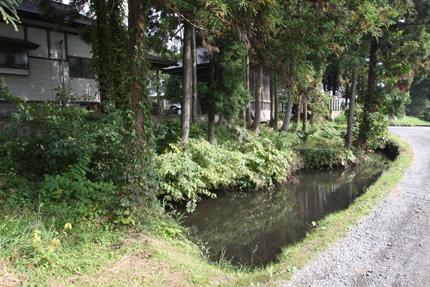 熊野神社の南の沼